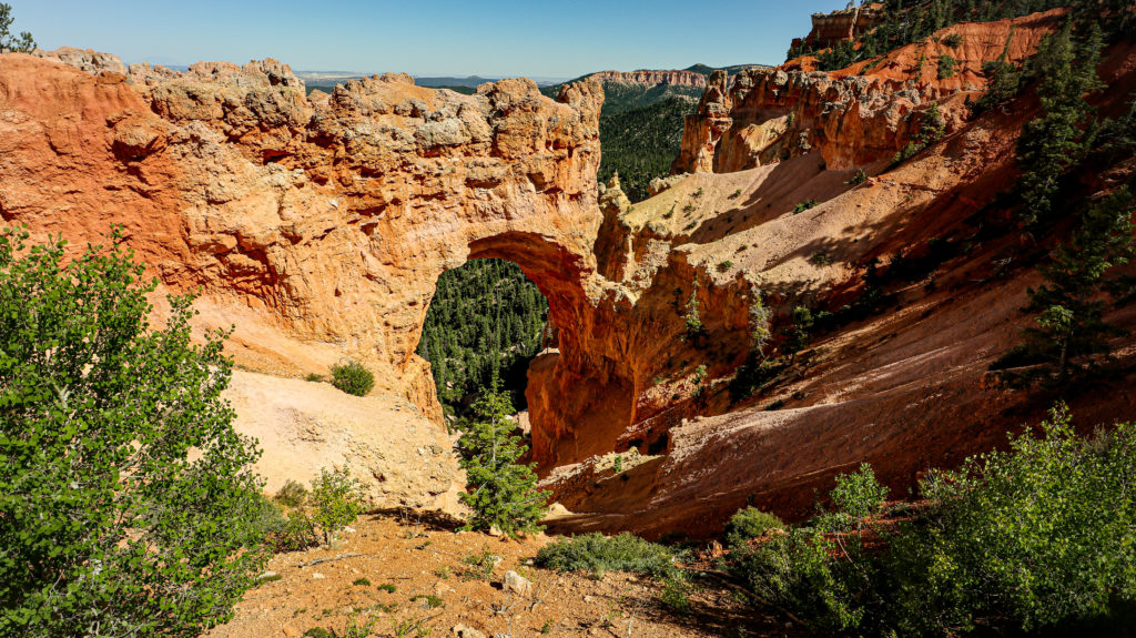 Ponderosa Point and the natural bridge in bryce canyon national park