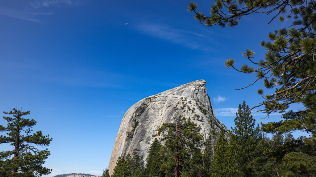 A view of half dome mid hike